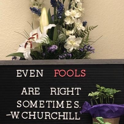 even fools